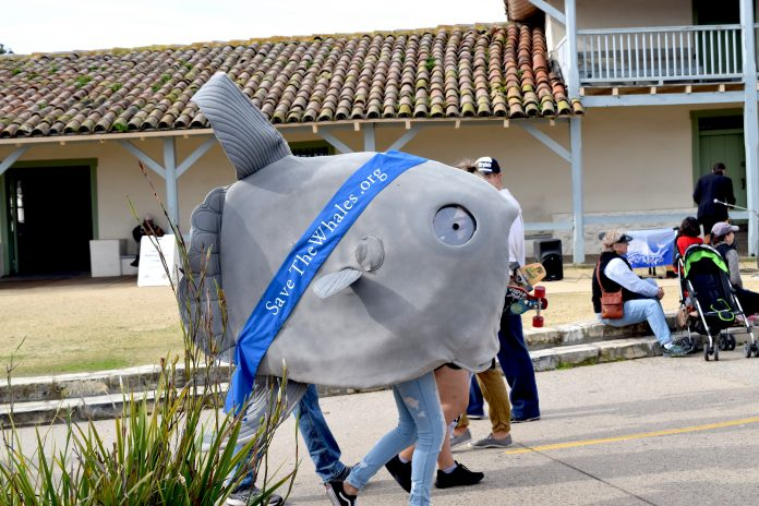 Whalefest volunteers dressed as marine animals to raise awareness on pollution.